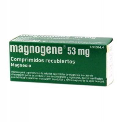 MAGNOGENE 45 COMPRIMIDOS RECUBIERTOS